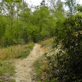 The trail leading to my campsite crosses an easement.