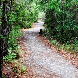 Cedar Point Tideland Trail