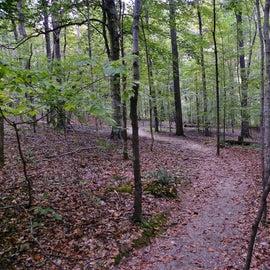 Oak Rock Trail