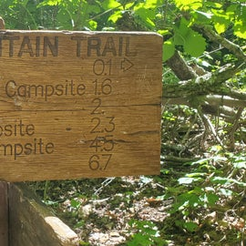 great hike to Cascade Falls. short drive from FDR