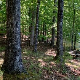 trails around campground