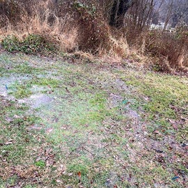 Site 166: this is where my tent was...