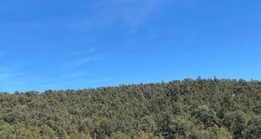 Humboldt-Toiyabe/Ward Mountain Campground