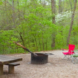 Clean sites with good fire pits.