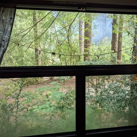 view from inside our RV