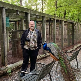 Their is a bird habitat close to Gaston's Restaurant!