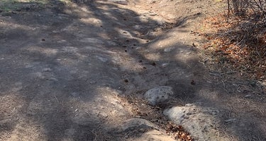 Pajarito Springs (Dispersed)