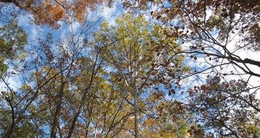 Redman Creek Recreation Area