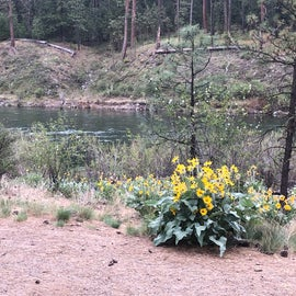 taken from campsite 1