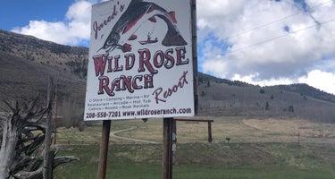 Jared's Wild Rose Resort