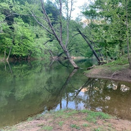 view of creek from fishing levee