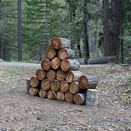 A winter of downed wood ready for a summer of camping.