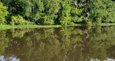 High Bluff - Joe Budd WMA and Lake Talquin State Forest