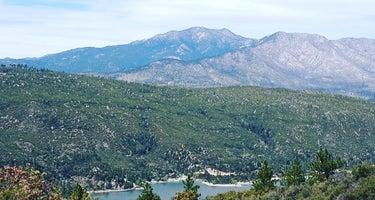 Thomas Mountain Campsites