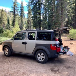 We car camped, plenty of space for 2 SUVs