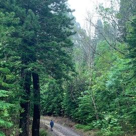 Very beautiful around the campground