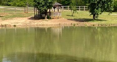 4 Paws Kingdom Campground & Dog Retreat