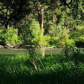River along Campsite 21
