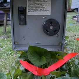 The electric site we were at only had this kind of plug. Also had water