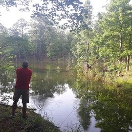Quiet cove to fish