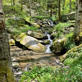 Jake creek