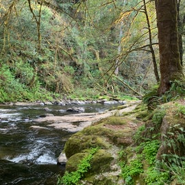 North Fork Coquille River