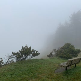 overlook by road to beach-Cape Blanco State Park