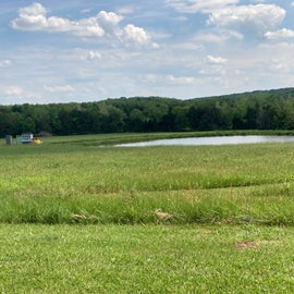 Pond and Chicken Coop out in the Meadow