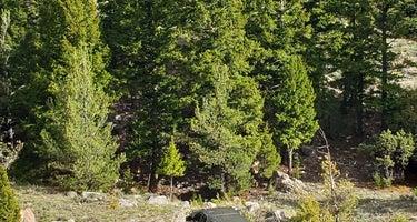 Travertine Road Dispersed - Yellowstone