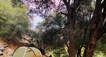 Leavis Flat Campground