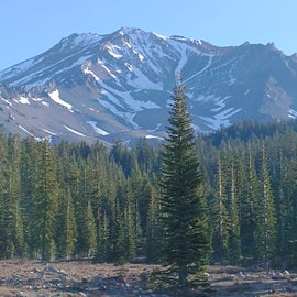 Mt. Shasta trails, about 40 min drive from campground