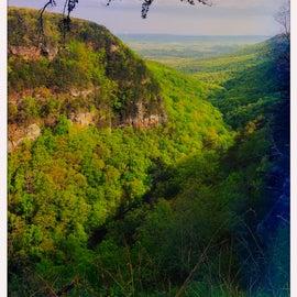 Canyon Views!