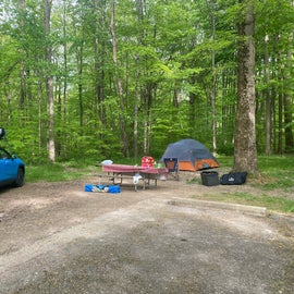 Site 85 tent only