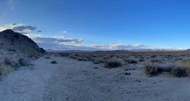 Mojave National Preserve - 17 Mile Camp