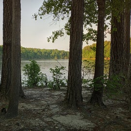 Falls Lake NC