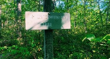 Brassie Brook Lean-to - Bear Mountain
