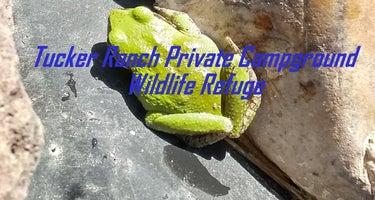 Tucker Ranch Private Campground Wildlife Refuge