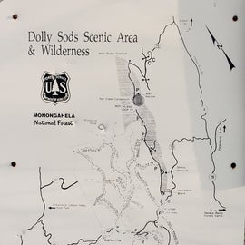 Map of the forest. bring paper maps and/or download maps for offline use.