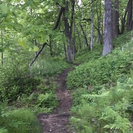 Rivers Edge Trail