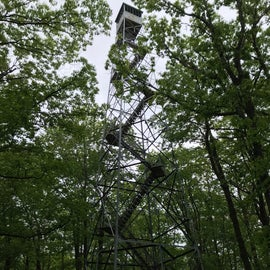Fire tower.  Matt was brave, as was a visiting family reunion with about 20 adults and 20 kids between 4 and 10.  No thank you.--I will stay on the ground and take pics.