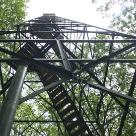 100 feet into the air with views above the canopy of the river valley.  Take your time, and hold your phone tight!