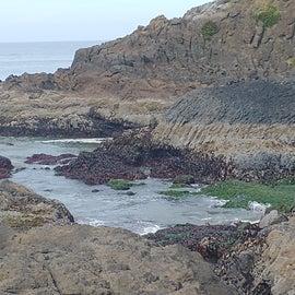 Agate beach trail