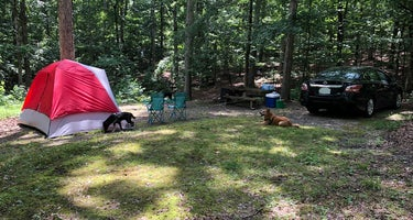 Taylor Bay Campground
