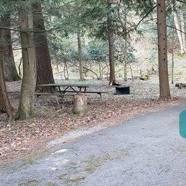 Site 14 Horseshoe Recreation Area CG