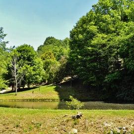 Pond next to the Campground