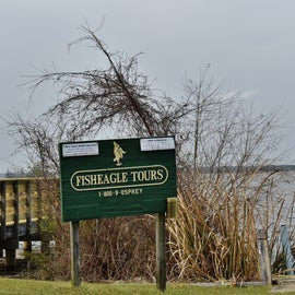 Fisheagle Tours is within walking distance of Cypress View Campground and within the state park.