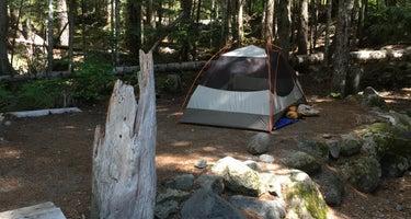 Cougar Rock Campground