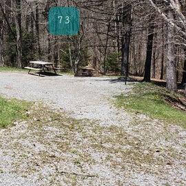 Grayson Highlands SP Site 73