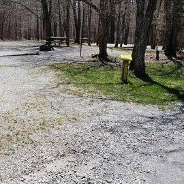 Grayson Highlands SP Site 6