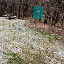 Grayson Highlands SP Site 7